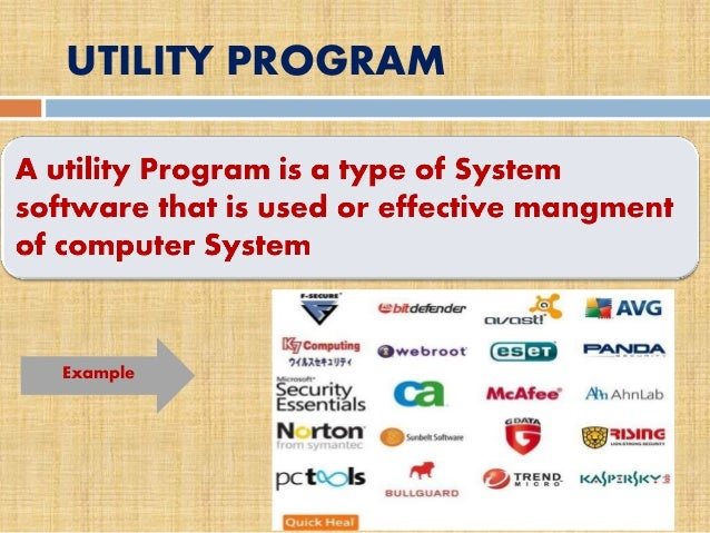 computer programs or software are an example of