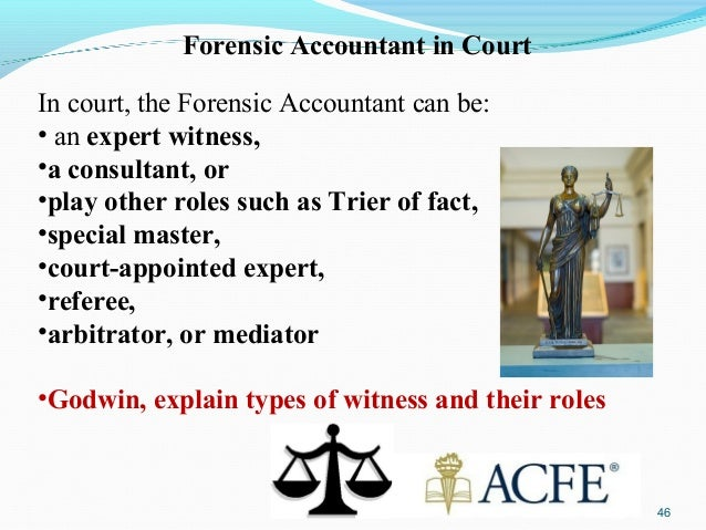 expert witness report example forensic